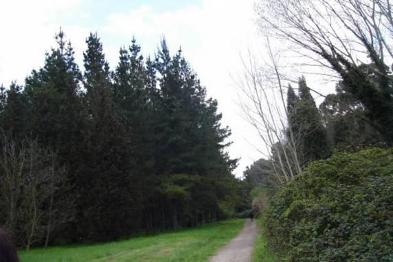 """Regione Lazio, Avenali: """"Per la Regione parchi sempre più protagonisti"""""""