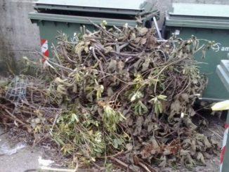 Sfalci e potature: a Cerveteri il 21 ottobre auto-compattatore per chi non fa il compost