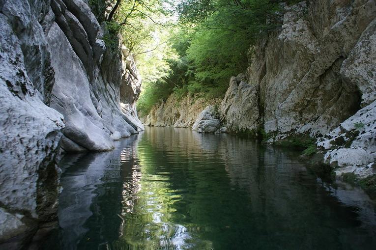 Regolamento e progetti per l'uso del Marchio del Parco Nazionale del Cilento, Vallo di Diano e Alburni.