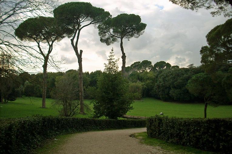 Parco di Villa Ada, il sogno di chi ama le attività all'aperto