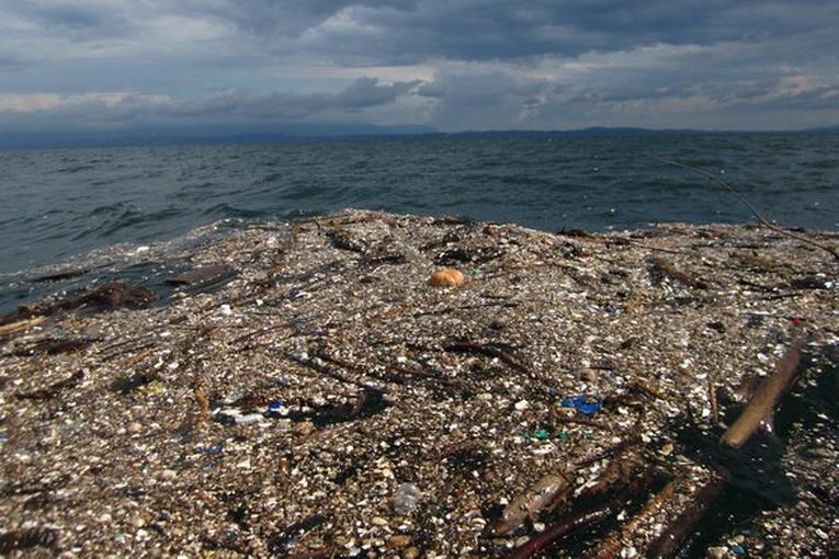 Pacific Trash Vortex: l'isola di plastica del Pacifico