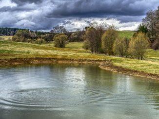 Water Supply Biotech, progetto per ridurre il consumo d'acqua in agricoltura