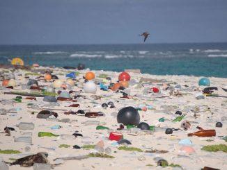 La plastica che uccide il mare, se ne parla ad Ariccia con Care the Oceans