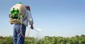 Ue: più trasparenza sugli studi scientifici sui pesticidi