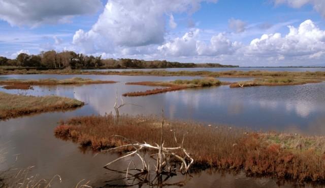 2 febbraio, giornata mondiale delle zone umide