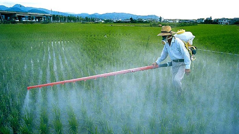 Legambiente, in marcia contro i pesticidi