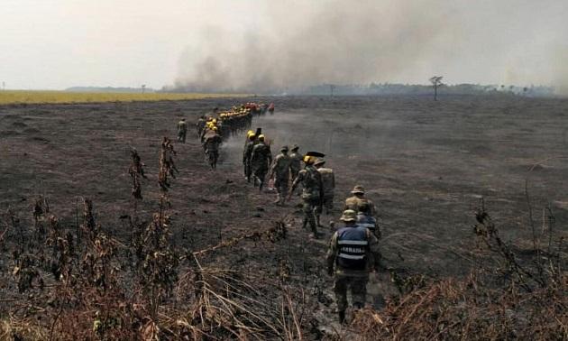Amazzonia, incendi: più 196% rispetto al 2018