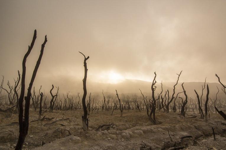 Cambiamenti climatici: cosa ci aspetta nei prossimi anni
