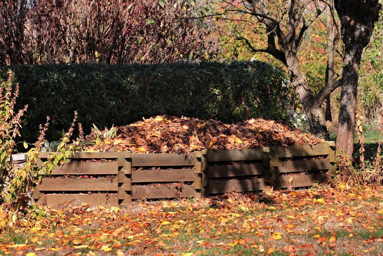 Compost, cosa si deve acquistare per produrlo