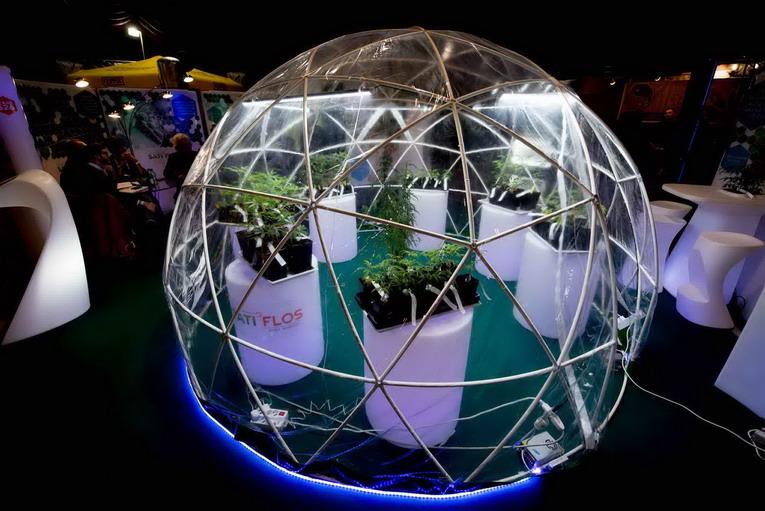 Canapa Mundi 2020, le nuove frontiere dell'innovazione ambientale