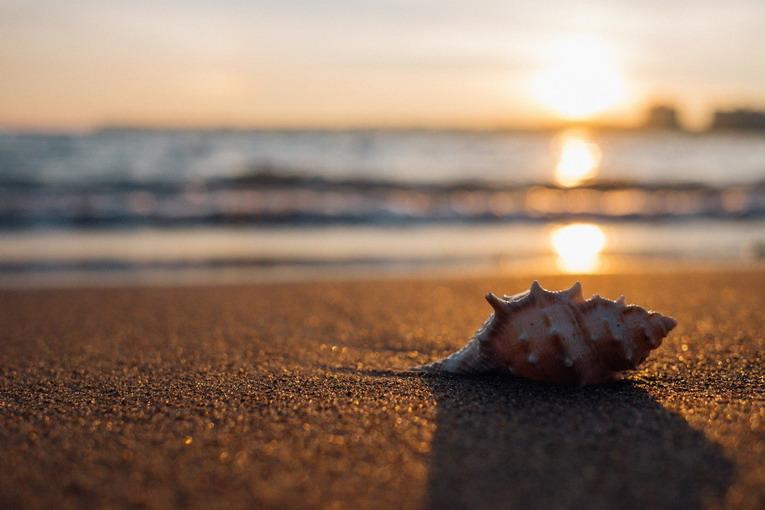 Spiagge libere, portiamo via la spazzatura