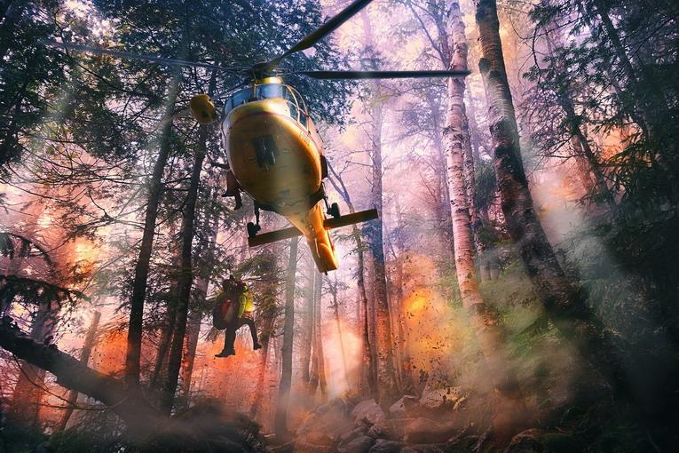 Incendi boschivi, come si può prevenire