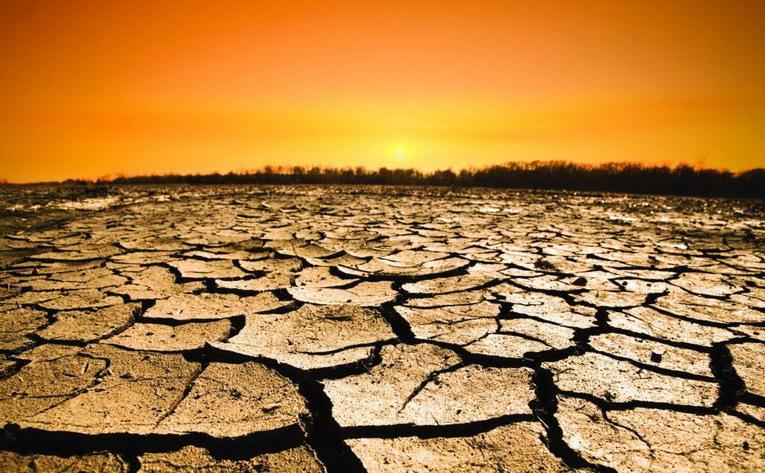 Desertificazione, quali rischi si corrono