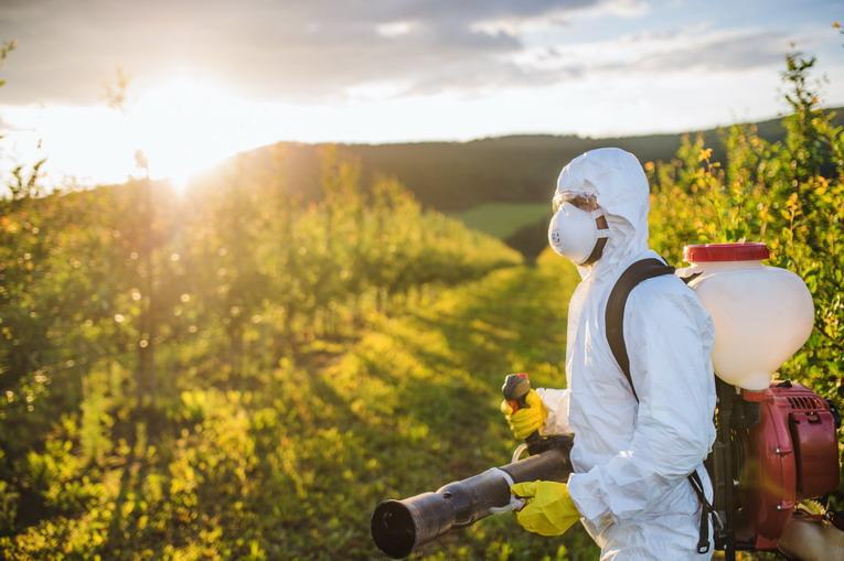 Impatto dei pesticidi sull'ambiente